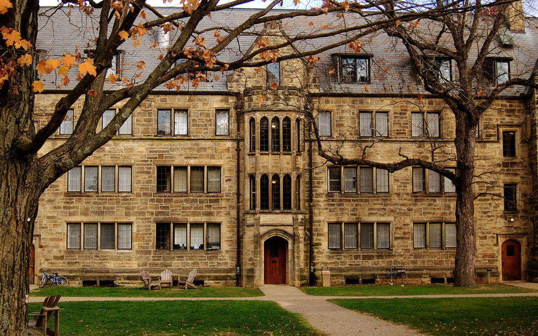 Kenyon College Board Appoints Trustees